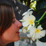 Andrea mag Tempelblumen